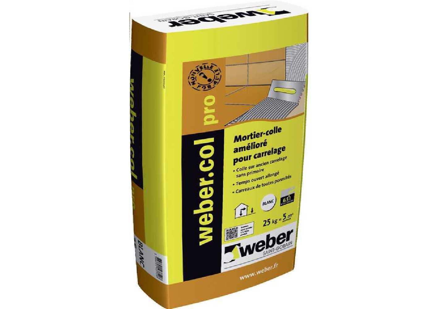 Weber.col Pro Grise  25 Kg